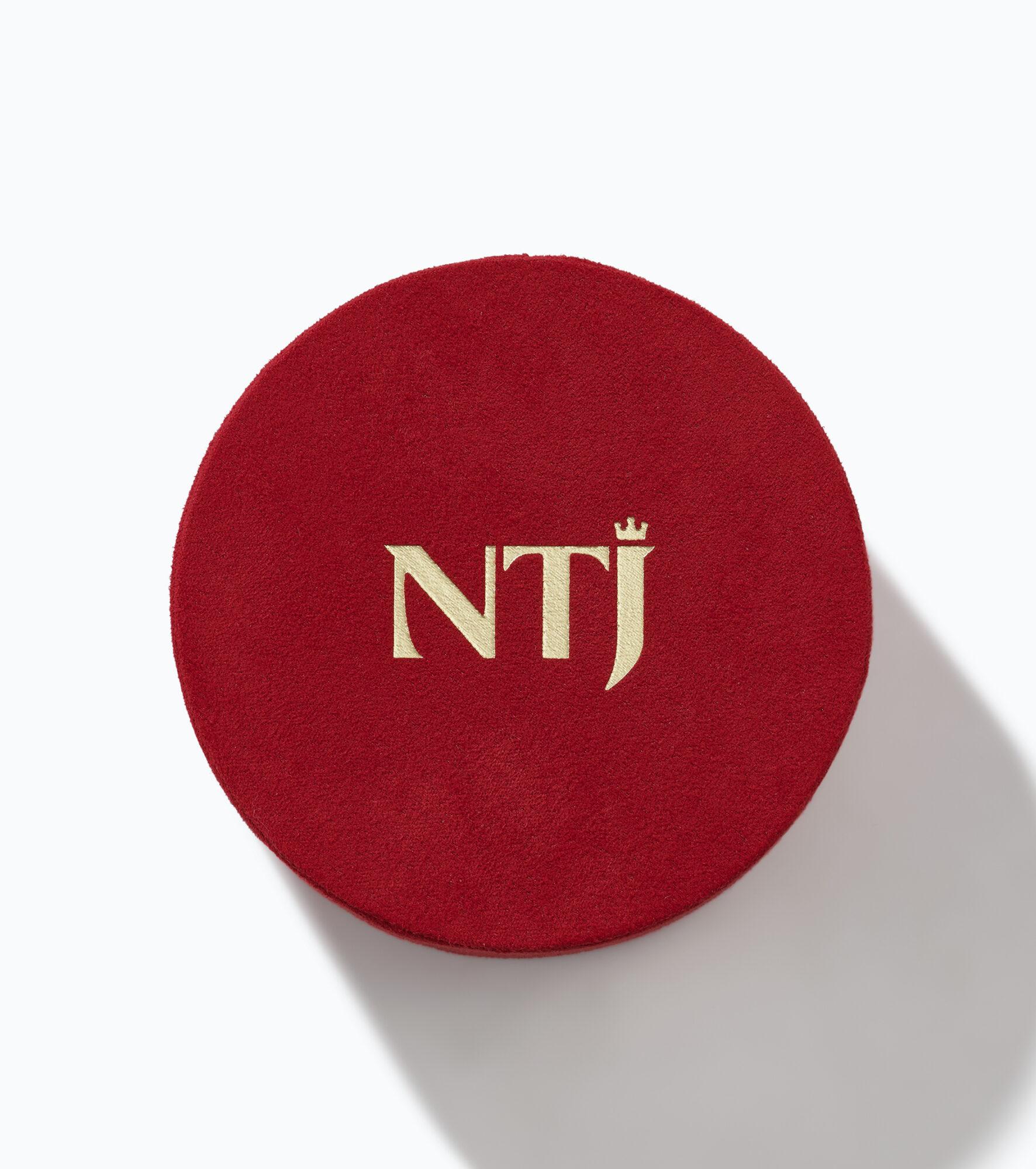 Logo NTJ